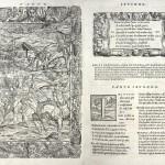 Ludovico Ariosto, Orlando furioso, Venezia, Valgrisi, 1556 (volume della Biblioteca A. panizzi di Reggio Emilia)